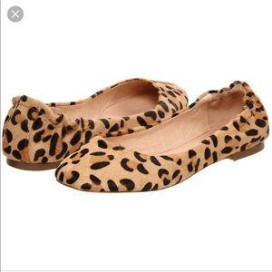 Steve Madden Koool Leopard Ballerina Flats